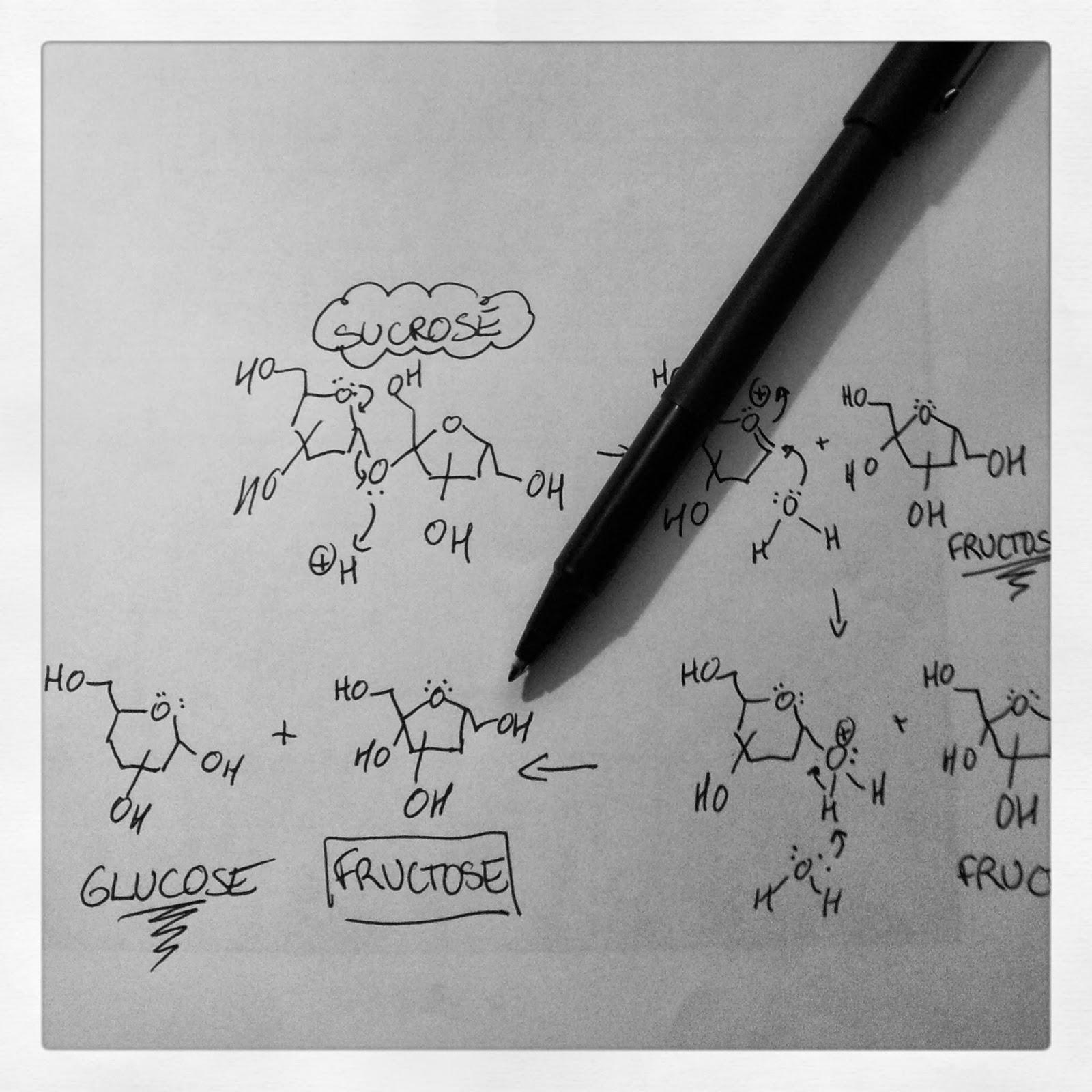 acid-catalyzed hydrolysis of sucrose   kitchen heals soul