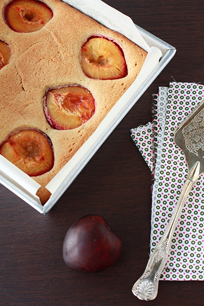 plum spice cake is a moist light spice cake flavored with cardamom, allspice, anise, ginger, and topped with plum halves