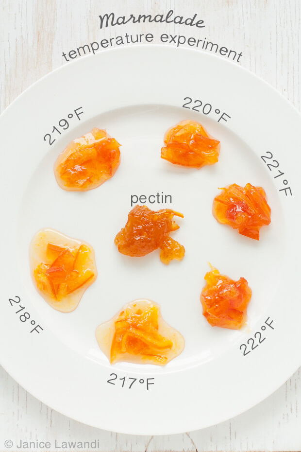 A palette of marmalades cooked to different temperatures to show the impact of cooking temperature on marmalade set. Marmalade cooked to 217 are more runny while marmalades cooked to 220–222ºF are just right. Above 222ºF, marmalade becomes dryer and chewy