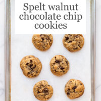 A sheet pan lined with parchment with baked thick chocolate chunk cookies (golden brown on the edges)