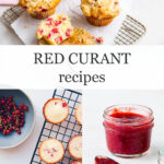 Red currant recipes and baking with fresh currants