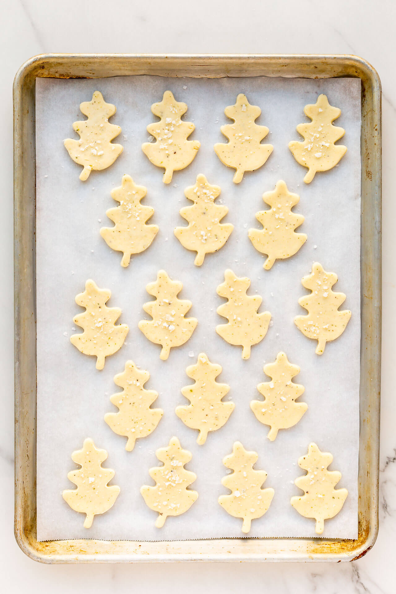 Oak-leaf shaped savoury shortbread biscuits cut-out and placed on a parchment-lined sheet pan ready for the oven