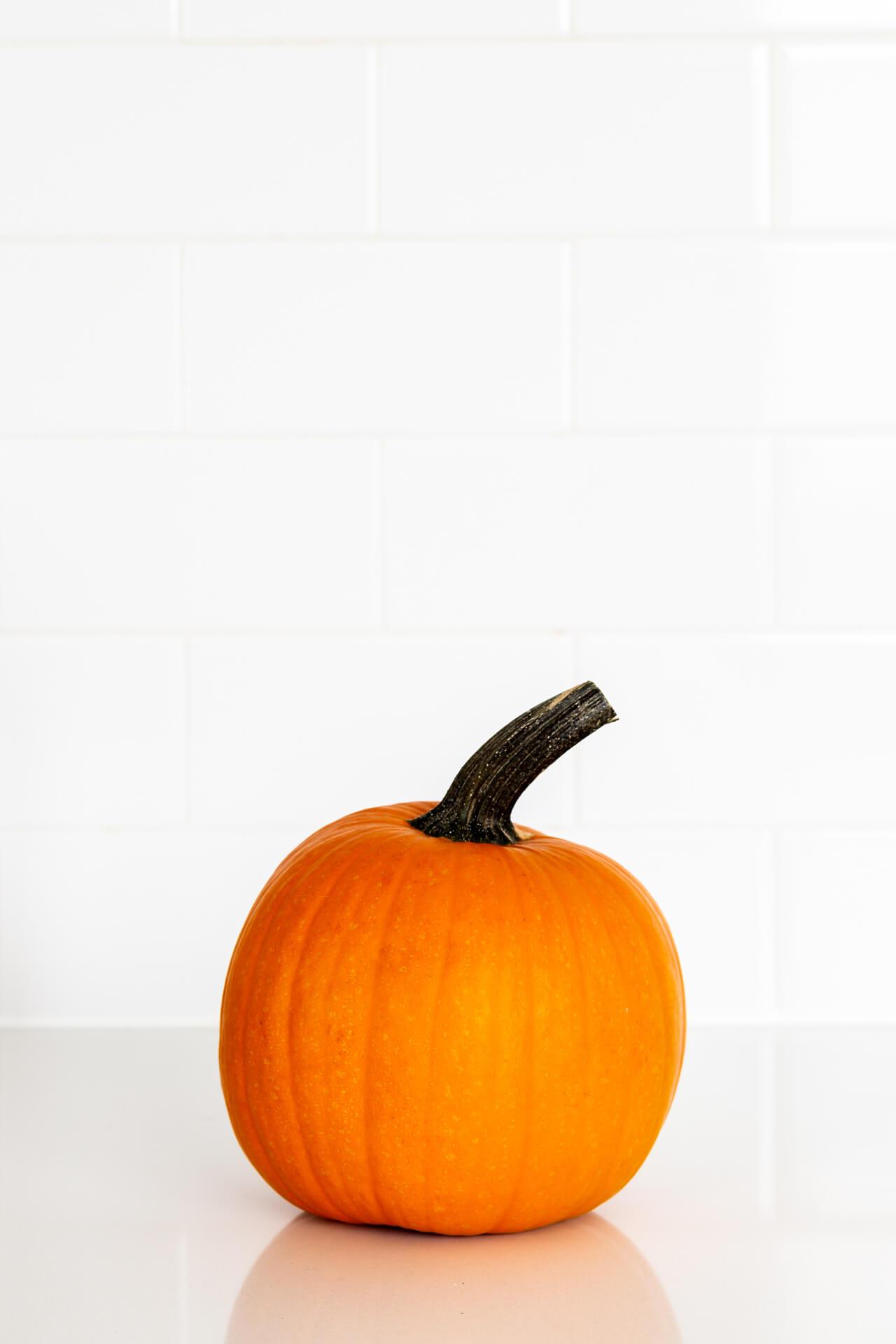 Sugar pie pumpkin on white counter.